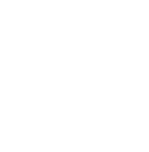 Seta branca